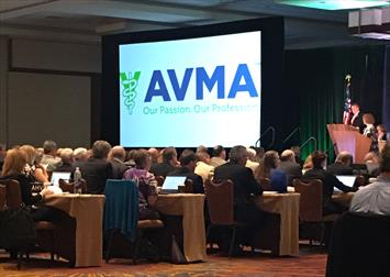 Delegates asked the AVMA to promote more research into cannabis-based therapies for pets