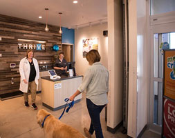 Petco stores now house veterinary clinics - VIN