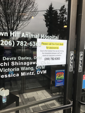 A Trip To The Vet Vets4pets