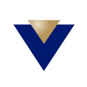 news.vin.com